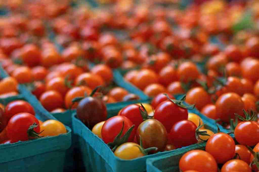 clients-de-restaurants-tomates-cerises